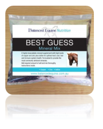 Balanced Equine Nutrition Best Guess Mix|Balanced Equine Nutrition Best Guess Mix