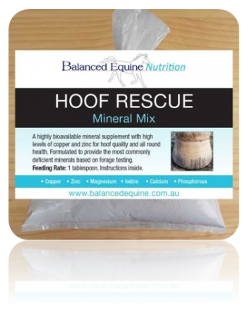 Balanced Equine Hoof Rescue Mix|Balanced Equine Laminitis Rescue Mix