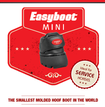 |Easyboot MINI smallest hoof boot in the world