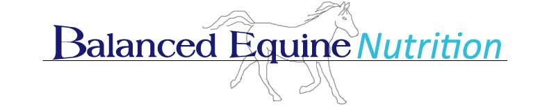 balanced equine nutrition logo